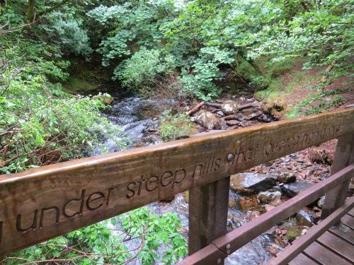tarka trail footbridge