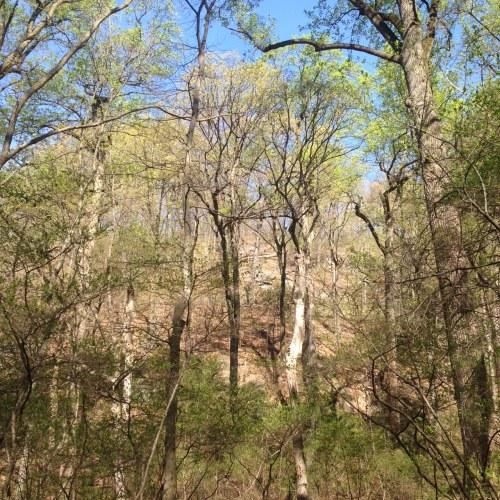 inwood hill