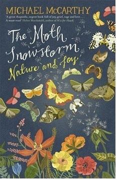 moth-snowstorm-pic